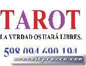 tarot la verdad os hara libres